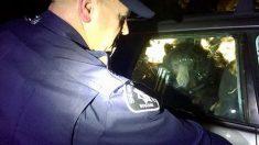Un ours affamé est aidé par la police après s'être enfermé dans une voiture