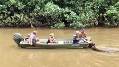 Hawaï : le surfeur Laird Hamilton aide à sauver des bisons emportés par les inondations à Kauai