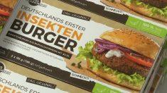 Des burgers d'insectes au supermarché, le projet original d'une startup allemande