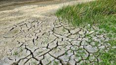 Deux alertes sécheresse en vallée du Rhône et de la Drôme
