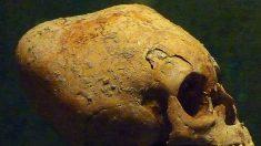 Déformations crâniennes dans la Colca Valley: quelles hypothèses scientifiques?