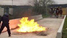Pays de Galles: des chevaux de la police traversent le feu lors d'un entraînement anti-émeutes