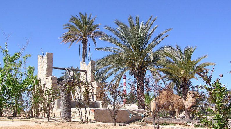 Tunisie: troubles autour d'un  puits dans le centre du pays