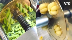 Voici des machines à pâtes magiques ! Il suffit de regarder comment elles produisent différentes formes de pâtes - c'est si captivant