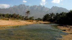Le cyclone Mekunu touche l'île yéménite de Socotra: 17 disparus