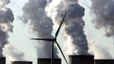 Les motifs cachés du mouvement écologiste