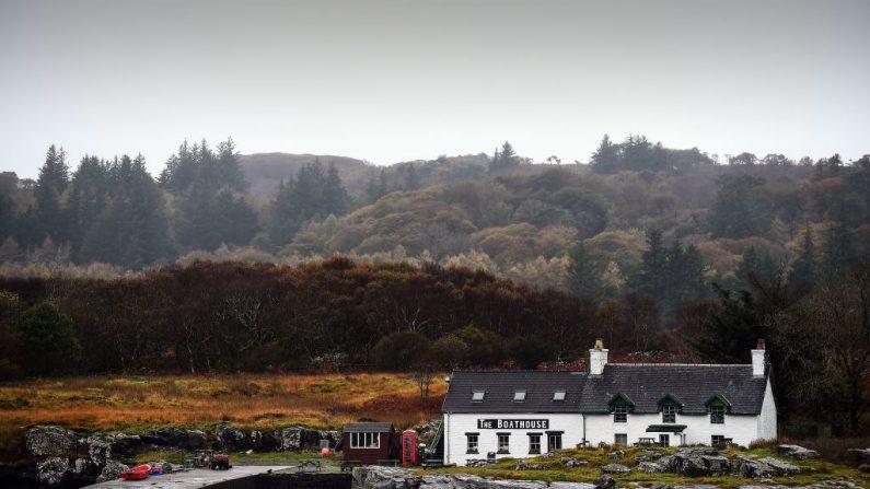 Cinq habitants rachètent leur petite île en Écosse