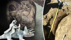 Ces 5 découvertes archéologiques suggèrent la coexistence des hommes et des dinosaures - le n°1 laisse songeur