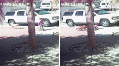 Un garçon joue devant l'entrée du garage quand un chien vicieux attaque puis, tout à coup, un «héros» vient à la rescousse