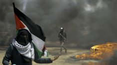 Selon la diplomatie américaine, «Pas de lien entre l'inauguration de l'ambassade à Jérusalem et les manifestations dans la bande de Gaza»