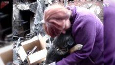 Un chien câline son maître après que leur maison ait été détruite dans un incendie