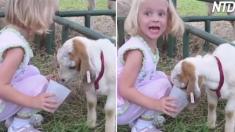 Des tout-petits rencontrent des animaux sauvages dans des zoos pour enfants - maintenant, surveillez les réactions des enfants
