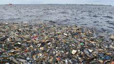 Les États en première ligne pour lutter contre le plastique (responsable ONU)