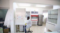 Au Gabon, un laboratoire ultra-sécurisé contre le virus Ebola