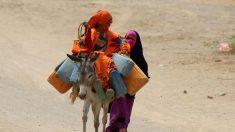 Le désarroi des déplacés yéménites de Hodeida