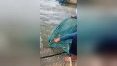 La technique de pêche de cette femme âgée semble très simple, pourtant elle attrape une grande quantité de poisson - c'est impressionnant