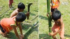Les enfants d'un village lointain ont besoin d'un abri pour préparer le déjeuner. Au lieu d'appeler un adulte, ils prennent une machette