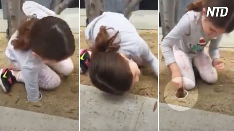 Une petite fille met son bras dans un tuyau souterrain – quand elle sort ce «bébé», elle crie de joie