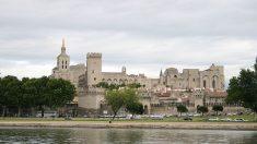 A Avignon, le message de soutien d'un chorégraphe israélien à Gaza