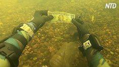 Le plongeur fouille le fond de la rivière à la recherche d'un trésor et trouve de l'argent comptant