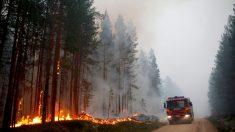 Important incendie de forêt en Lettonie