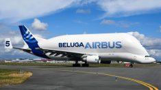 France: premier vol du Beluga XL, le géant de la famille Airbus