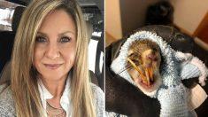 Une femme albertaine trouve un écureuil aux dents anormalement longues et lui tend un piège pour lui sauver la vie