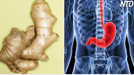 Vous êtes ce que vous mangez! 10 aliments qui ressemblent aux parties du corps pour lesquelles ils sont bénéfiques