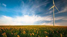Une science interdisciplinaire au service du développement durable