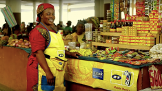 Les raisons du succès du portefeuille électronique au Congo Brazzaville