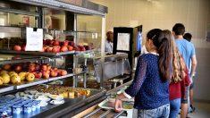 Un repas végétarien à la cantine scolaire une fois par semaine - l'Assemblée nationale a dit oui malgré l'avis défavorable du gouvernement