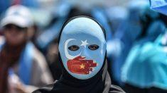 Les centres de lavage du cerveau en Chine ciblés par un sénateur australien