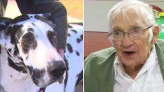 Un brave chien sauve la vie d'un homme de 89 ans qui s'est cassé la hanche et est resté collé sur la glace