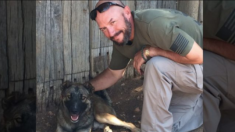 Un soldat en déploiement sauve un chien maltraité et tente de le ramener à la maison