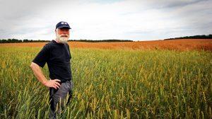 Jamais les agriculteurs n'ont été aussi nombreux à se convertir au bio – le gouvernement pourra-t-il tenir ses promesses?