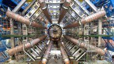 À la rencontre des nouveaux neutrinos