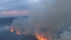 90 hectares détruits après un feu en forêt aux portes de Paris