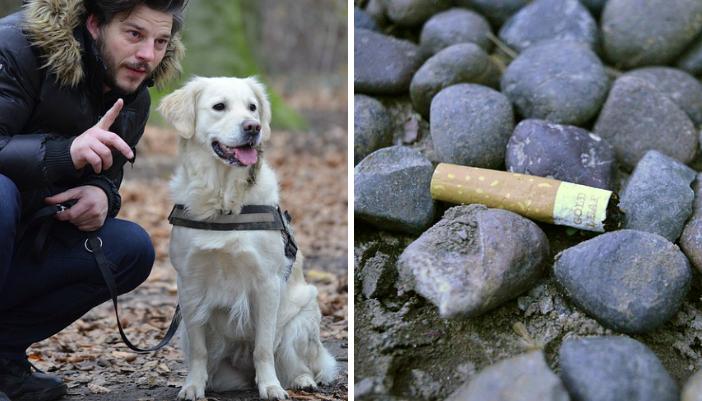 Oise: des amendes salées pour mégot jeté ou déjection canine non ramassée à Pont-Sainte-Maxence