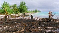 Essais nucléaires en Polynésie : l'archipel porte plainte contre la France pour crimes contre l'humanité