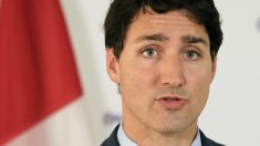 Légalisation du cannabis au Canada: une expérimentation lucrative au détriment de la santé des Canadiens