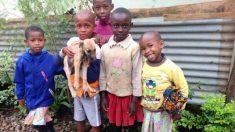 5 enfants emmènent un chiot errant au refuge après l'avoir sauvé au bord de la route