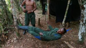 Bientôt d'anciens guérilleros communistes des Farc dans la forêt des Landes?