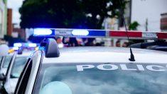 Dans l'Oise - Un syndicat de police se plaint d'avoir à surveiller les chasses à courre au détriment de la sécurité des personnes