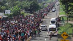États-Unis: des groupes de milice commencent à se déployer à la frontière américaine alors que les gardes-frontière mettent en garde contre «d'éventuels civils armés»