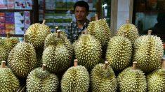 Un vol a été retardé parce que les passagers s'opposaient à la forte odeur de durian dans l'avion