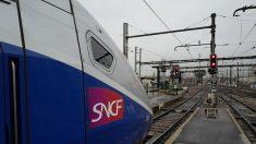 Un homme a tenté de s'immoler avec du rosé dans un TGV arrivant à Lyon