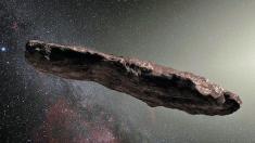 Astéroïde Oumuamua : l'hypothèse extraterrestre est relancée