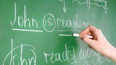 Apprendre une langue étrangère : plaidoyer pour l'étude de la grammaire