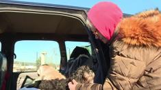 Jura : la dure vie d'une retraitée de 74 ans - elle vivait dans sa voiture avec ses 2 chiens