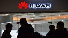 Japon - Les sociétés de télécommunication nipponnes rejettent Huawei comme fournisseur du réseau 5G